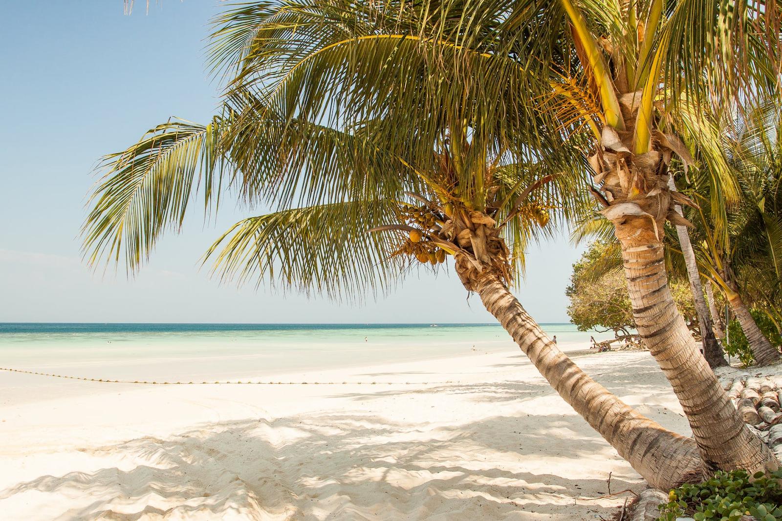 5 redenen waarom je op vakantie moet naar Curaçao