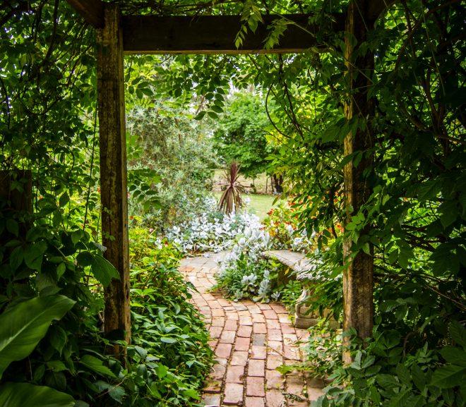 Hedera schutting, de ideale omheining van uw tuin
