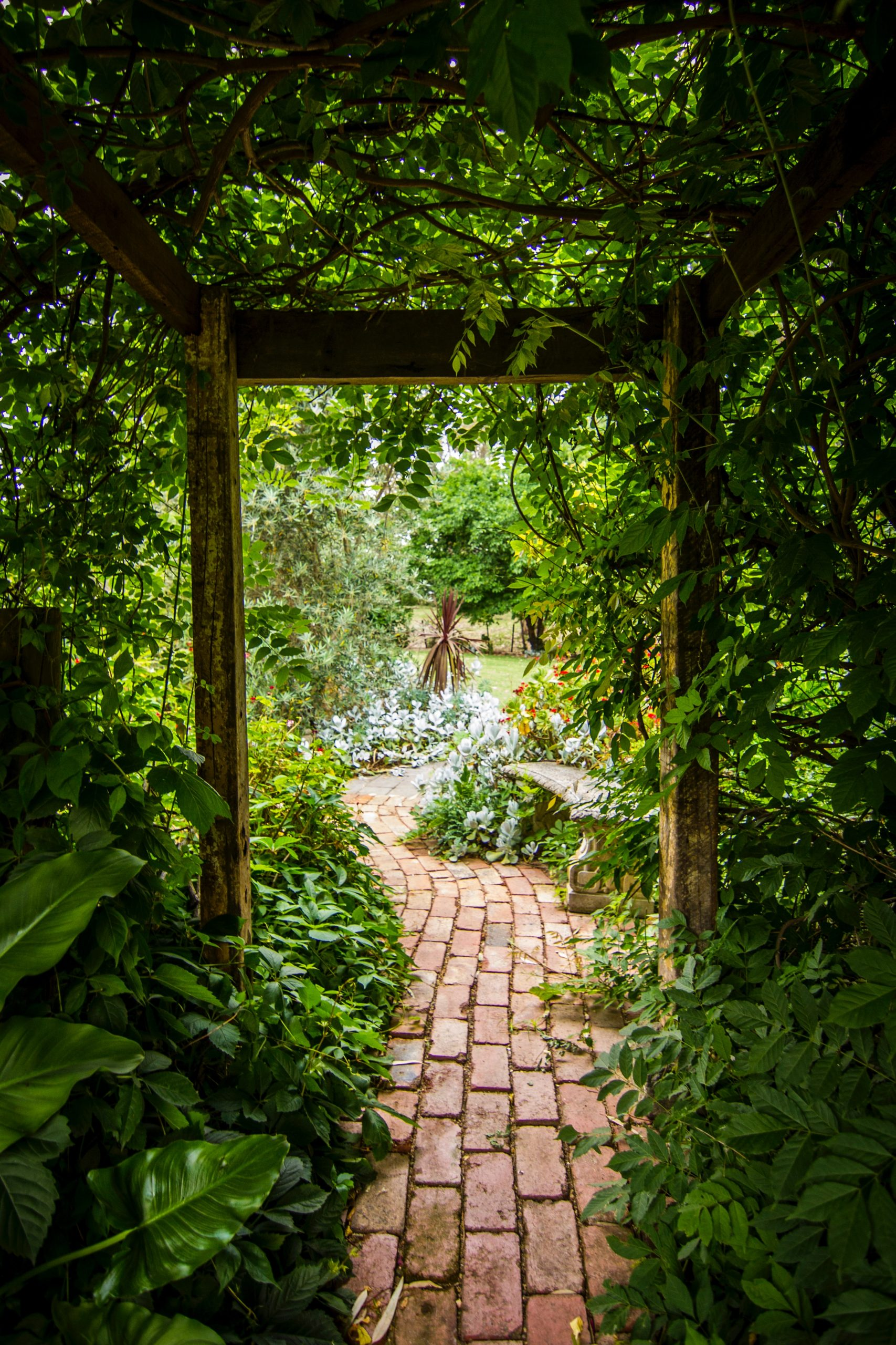 Photo of Hedera schutting, de ideale omheining van uw tuin