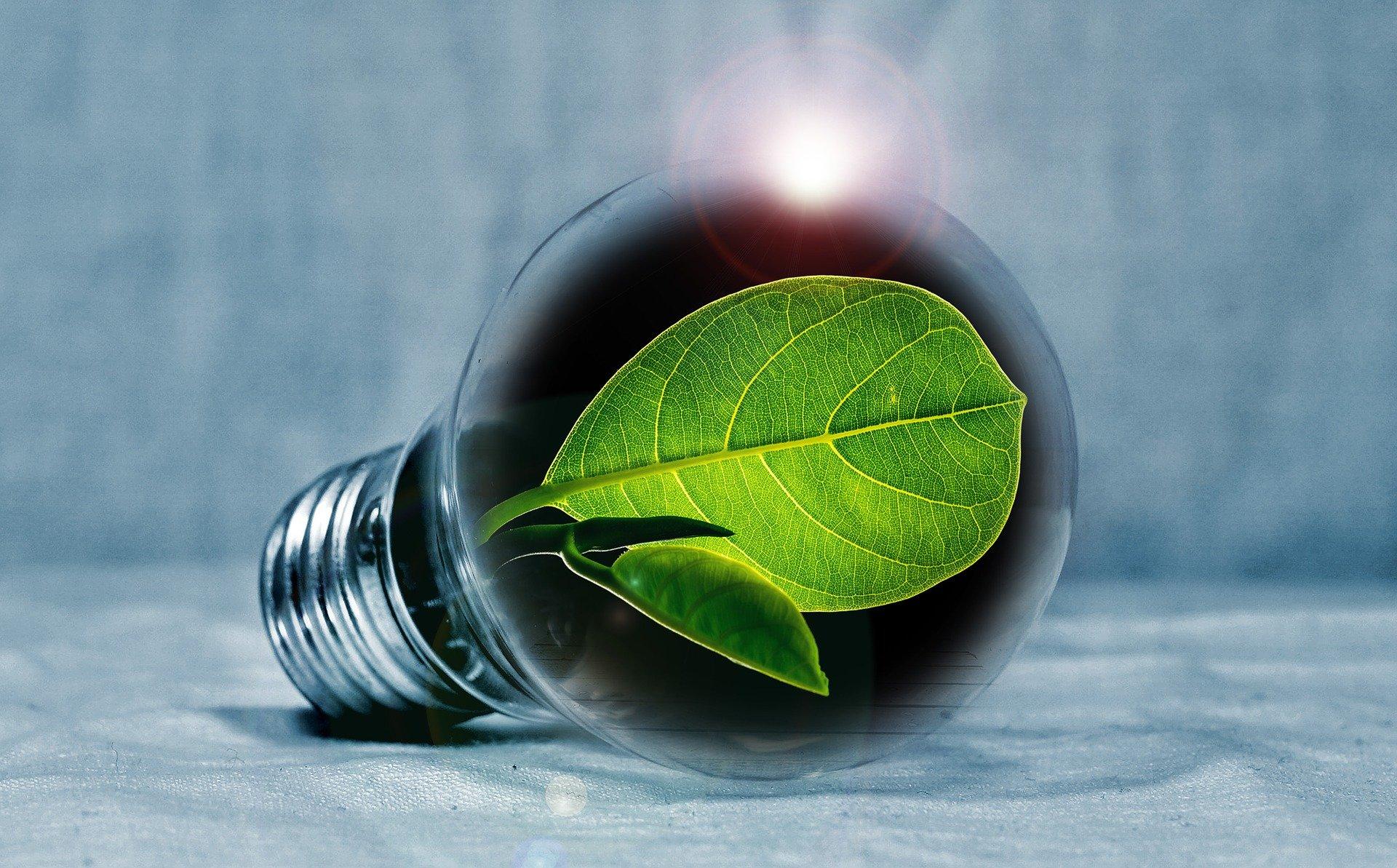 Photo of Studenten profiteren het slimst van bespaarvoordeel op energie vergelijken!
