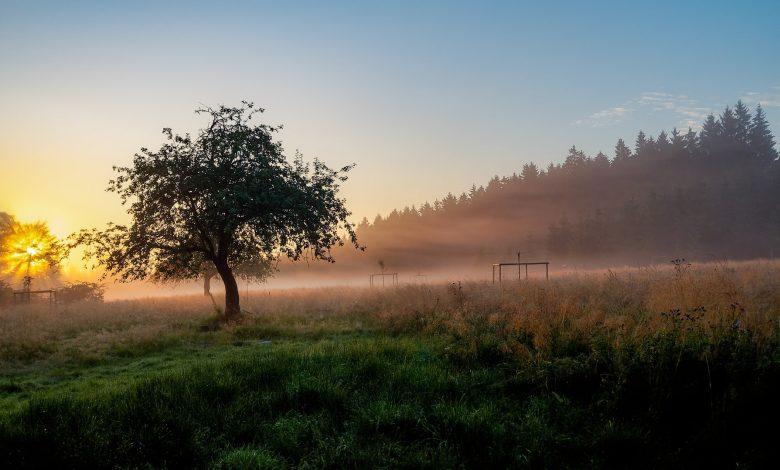 3 redenen om naar de Ardennen te gaan