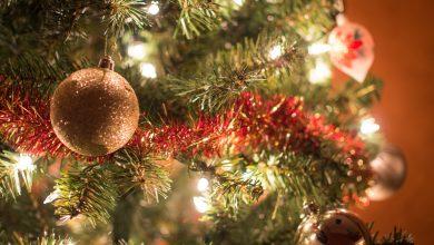 Photo of Gezelligheid creëren tijdens de feestdagen