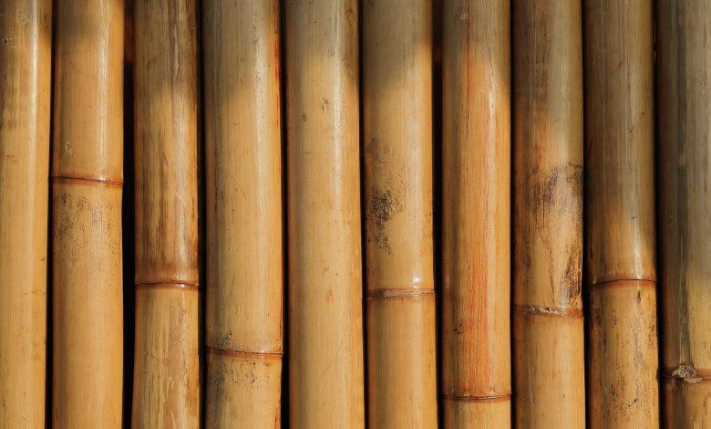breng bamboe in je interieur
