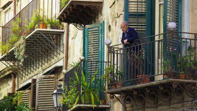 Photo of De perfecte planten voor jouw balkon!