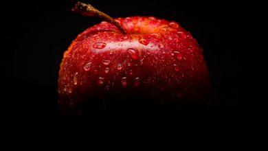 Photo of Wanneer appels plukken?