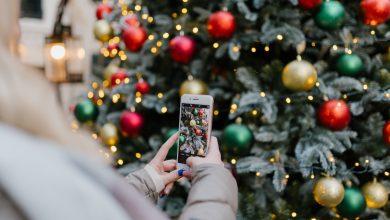 Photo of Breng de kerst in je tuin met een Fairybell kerstboom!