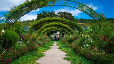 Photo of Hoe fleur je een tuin op?