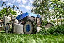 Photo of Onmisbare tuingereedschappen voor in de zomer