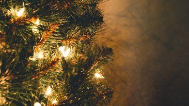 Photo of 3x inspiratie voor kerstverlichting om het huis