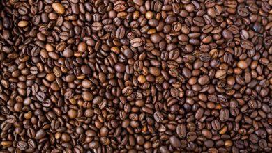Photo of De juiste koffie kiezen voor je eigen kantoor